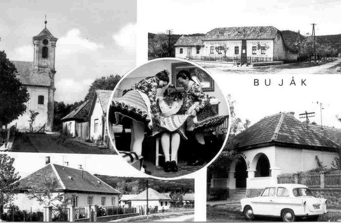 bujak07