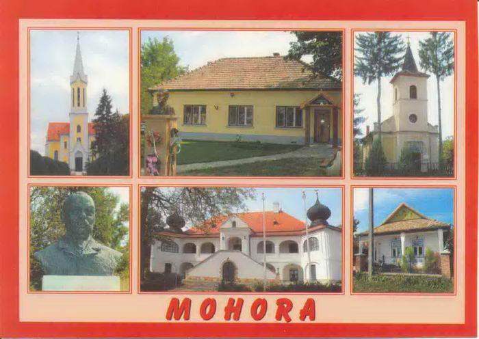 mohora01