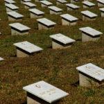 Budapest legnagyobb temetője II.